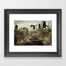 Vintage City Park Framed Art Print