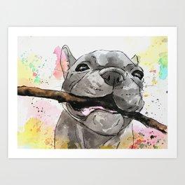 Playful French Bulldog Art Print
