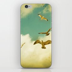 Ocean's Call iPhone & iPod Skin