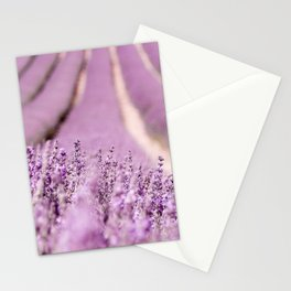 Lavender Happiness Stationery Cards