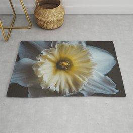 Daffodil 2 Rug