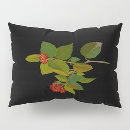 Lantana Mary Delany Vintage Floral Collage Botanical Flowers Black Background Pillow Sham