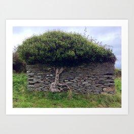 Tree in Wall Art Print