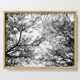 Tree Silhouette Series 7 Serving Tray