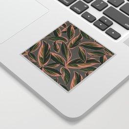Calathea Leaves Pattern- Pink Green Gray Sticker
