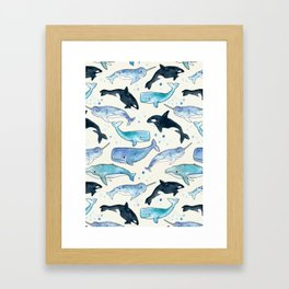 Whales, Orcas & Narwhals Framed Art Print