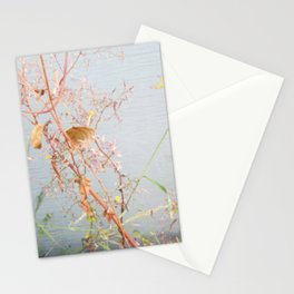 Intersection 5 Stationery Cards