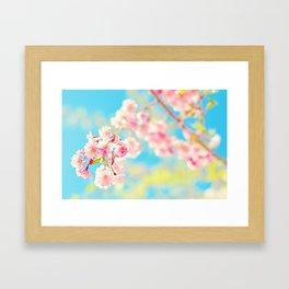 Spring Cherry Blossom Framed Art Print