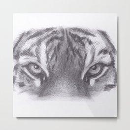 Tiger eyes Metal Print