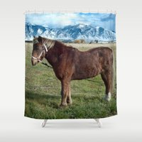 pony Shower Curtains featuring Shaggy Pony by Julie Luke
