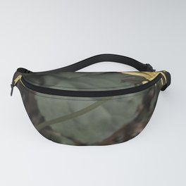 Dandelion and Fly Fanny Pack