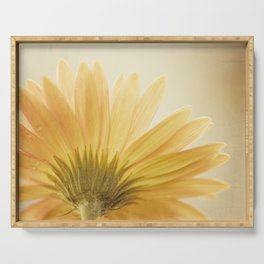 Gold Yellow Flower Photography, Golden Daisy Floral Photo, Nature Botanical Macro Picture Serving Tray