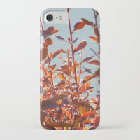 serenity iPhone & iPod Cases featuring serenity by Françoise Reina