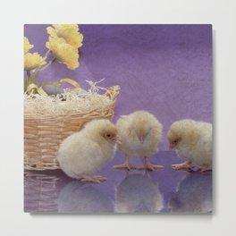 Cute chicks Metal Print