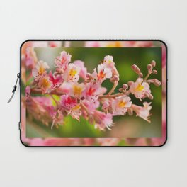 Aesculus red chestnut tree blossoms Laptop Sleeve