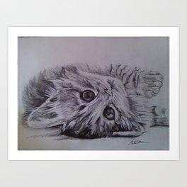 Cute little cat Art Print