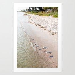 Summer Tide Art Print