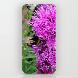 Busy Bumblebee iPhone Skin