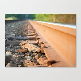 Trails with the Trains Canvas Print