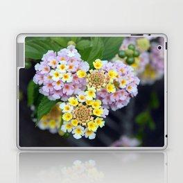Tropical Plant Lantana Camara or West Indian Lantana Laptop & iPad Skin