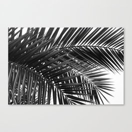 Tropical Palm Leaves - Black and White Nature Photography Canvas Print