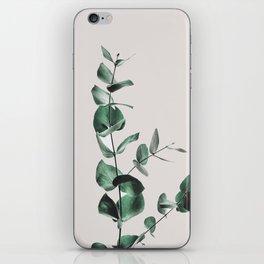Eucalyptus iPhone Skin