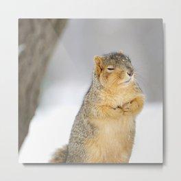 Zen Squirrel Metal Print