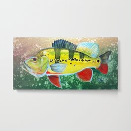 Peacock Bass Metal Print