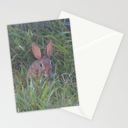 Rabbit in the Grass Stationery Cards