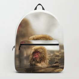 Snow Monkeys on Hot Spring Backpack