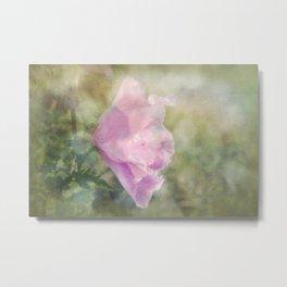 Rose of Sharon Morning Dew Metal Print