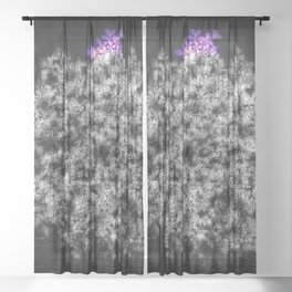 Lost in Translation Queen Anne's Lace Sheer Curtain