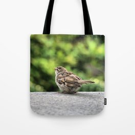 Little Feather Tasting Tote Bag