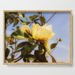 Magnolia and Bee Serving Tray