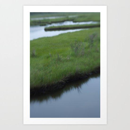 Cattus Island Art Print