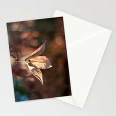 Late Autumn Light Stationery Cards