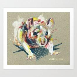 Baby rat Art Print