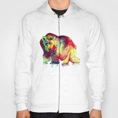 Coloured Bear Hoody