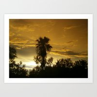 Palm Tree in the Sunset Art Print