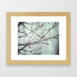 Wintermint. Framed Art Print