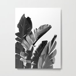 Banana Leaves Finesse #2 #tropical #decor #art #society6 Metal Print