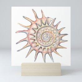 SHELL Mini Art Print