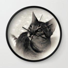 Cutie Bengalensis Kitten Wall Clock