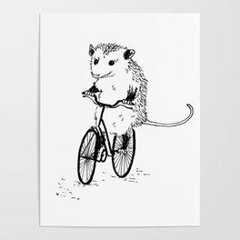 Opossums bike, too Poster