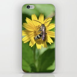 Hard Working Bee iPhone Skin