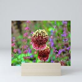 Gold and Purple Allium Garden Mini Art Print