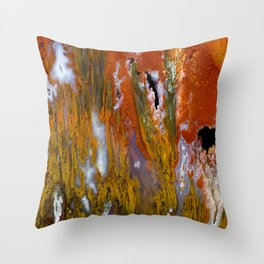 Cady Mountain Tube Agate Throw Pillow