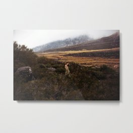 Into Oblivion - Limited Edition Metal Print
