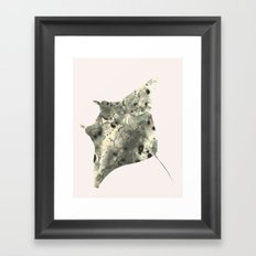Stingray in pink Framed Art Print