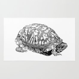 box turtle drawing Rug
